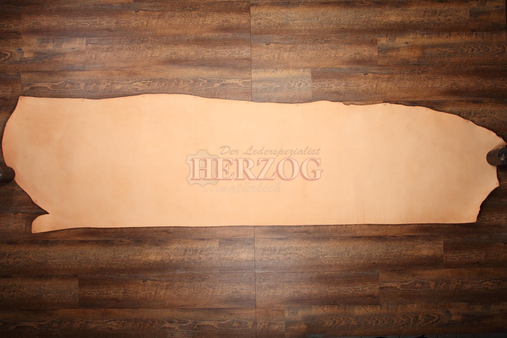 Herzog Fahlleder (Hals)